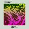 Thomas Garcia - Campanas