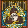 Widespread Panic -  Big Wooly Mammoth - 5-1-2016 The Rose Music Center, Dayton, Ohio
