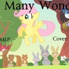 So Many Wonders (cover)