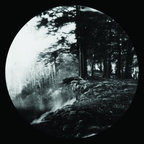 Premiere: White Visitation – Horizontal Dub