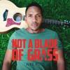 Not A Blade Of Grass - Juke Ross