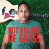 Not A Blade Of Grass - Juke Ross (Acoustic)
