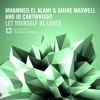 Mhammed El Alami & Amine Maxwell & Jo Cartwright - Let Yourself Be Loved (Original Mix)