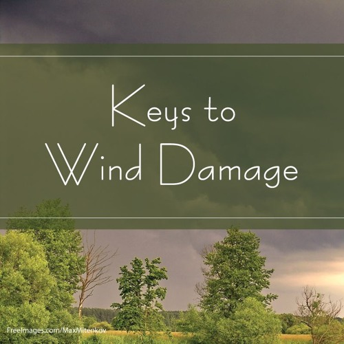 Keys to Wind Damage