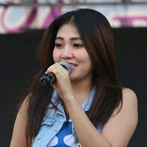 Download Lagu Dangdut Meraih Bintang