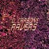 D. Carbone - Ravers Mini LP [3TH008]