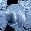 'Strength In Winter' by Polly Atkin