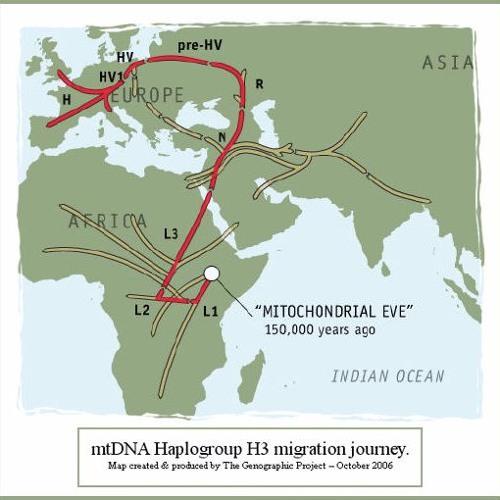 Haplogroups (L1b1a / E1b1a) by LeviathanChant | Leviathan Chant