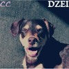 CCMX032: DZEI