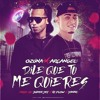 Ozuna Ft. Arcangel - Dile Que Tu Me Quieres (Official Remix) (Prod. Super Yei, Hi-Flow & Yancc)