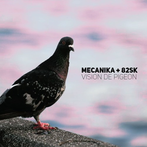 vision de Pigeon ft.Illest