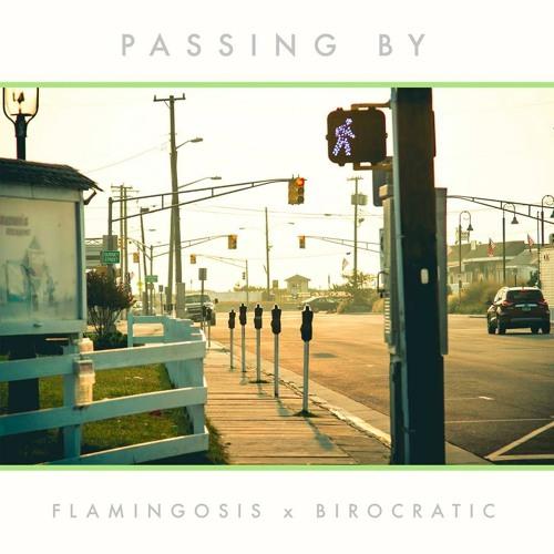 Birocratic x Flamingosis - Passing By