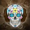 Mega Francesita - DJ KBZ@ Ft DJ Anderson M [ Edit Up Tribal Remix ] By, DJ Anderson Maldonado