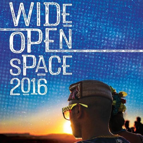 Wide Open Space Festival 2016
