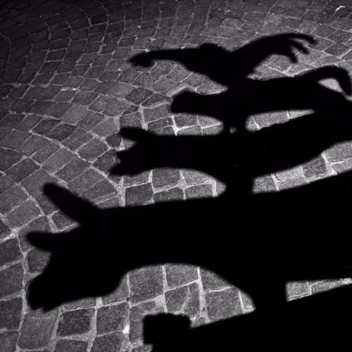 The Bremen Town Musicians by Enrica Sciandrone
