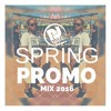 @DJNateUK Spring Promo Mix 2016