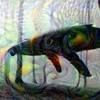 Dre Dog (Nickatina) -  Killa Whale