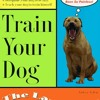 Train Your Dog the Lazy Way  download pdf
