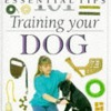Dog Training (101 Essential Tips)  download pdf