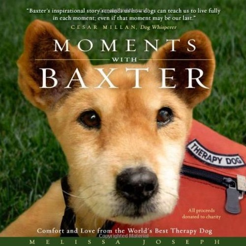 Moments With Baxter: Comfort and Love from the World s Best Therapy Dog  download pdf