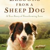 Lessons from a Sheep Dog  download pdf