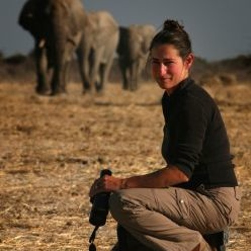 Dr. Caitlin O'Connell: Elephant Communication (February 10, 2016)