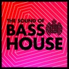 THE SOUND OF BASS HOUSE MINIMIX - MIXED LIVE BY ROSSI & LUCA
