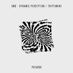 Smo - Dynamic Perception