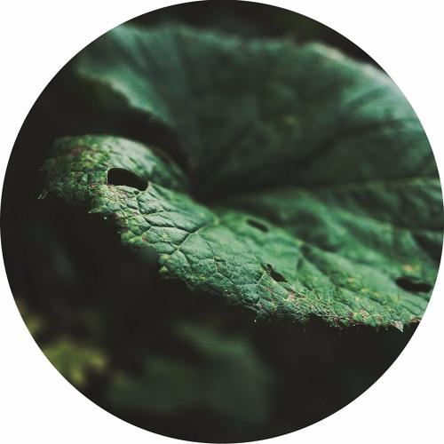 "[ARCHLE01] EEBB ""Spiruline EP"""