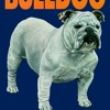 The Bulldog: Yesterday, Today and Tomorrow  download pdf