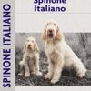 Spinoni Italiano (Comprehensive Owner s Guide)  download pdf