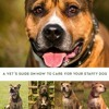 The Staffy: A vet s guide on how to care for your Staffy dog  download pdf