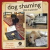 Dog Shaming 2014 Wall Calendar  download pdf