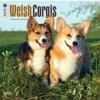 Welsh Corgis 2015 Square 12x12 (Multilingual Edition)  download pdf