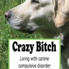 Crazy Bitch: Living with Canine Compulsive Disorder  download pdf