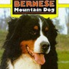 THE COMPLETE BERNESE MOUNTAIN DOG (Book of the Breed)  download pdf