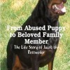 From Abused Puppy to Beloved Family Member: The Life Story of Jacob the Rottweiler  download pdf
