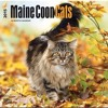 Maine Coon Cats 2015 Square 12x12 (Multilingual Edition)  download pdf
