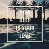 Calvin Harris & Disciples - How Deep Is Your Love (Flip'C Remix)