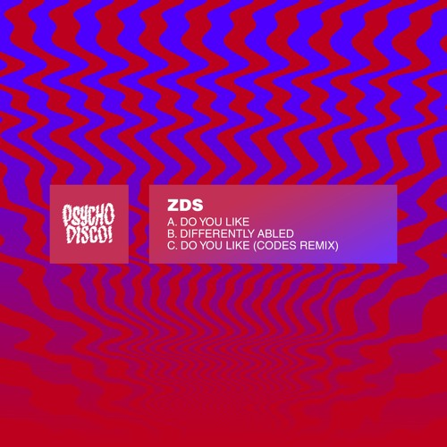 ZDS - Do You Like (Codes Remix)