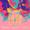 Zara Larsson - Lush Life (Thomas Gresen Remix)