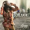 Screaming (Original Mix)