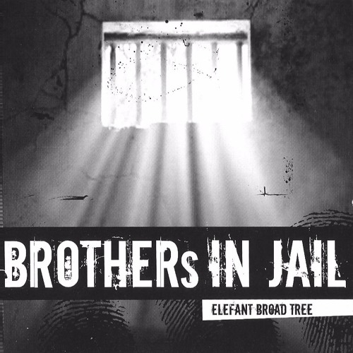 Brothers in Jail (Singer Martin E. Haurand 2008)