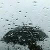 Alice & tecni_ko - Have you ever seen the rain