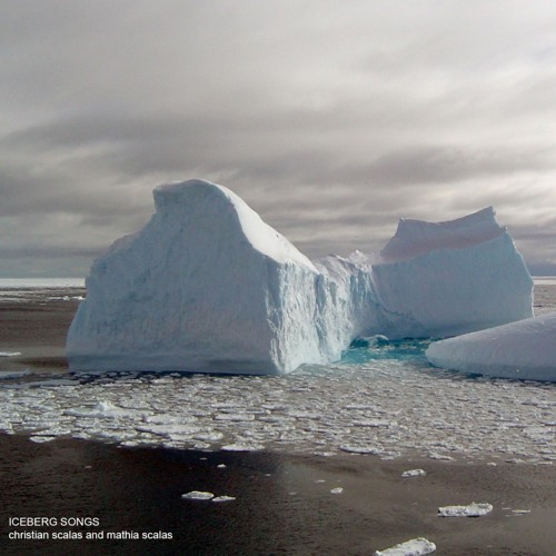 The Arctic Is Crying