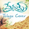 Malare - Telugu Reprise - Unplugged Cover - The Echoes Project