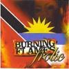 Workey Workey- Burning Flames