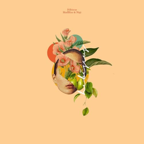 Hibiscus (feat. Naji)