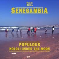 Populous - Kololi Under The Moon