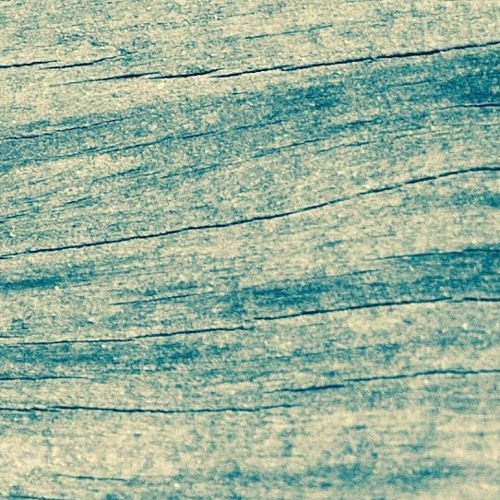 Snufmumriko - Driftwood (Everyday Dust Reinterpretation)